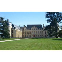 Château d'Oiron