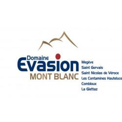 Forfait ski domaine evasion mont blanc
