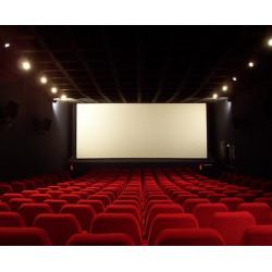 Place cinéma L'Empire Saint Dié des Vosges moins cher à 6,20€