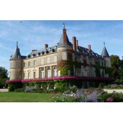 Tarif visite château de Rambouillet
