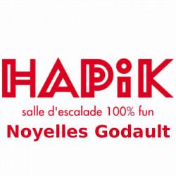 Tarif Hapik Noyelles Godault séance à 11€